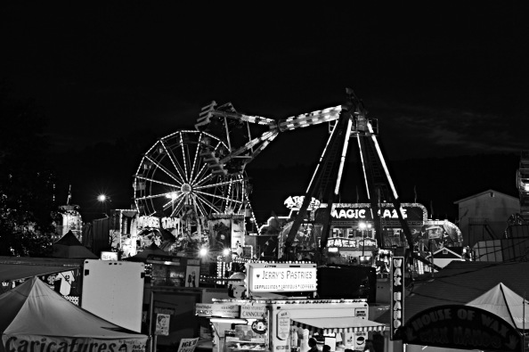 A Day at theFair